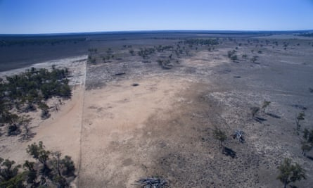 Recent land clearing near Moree, NSW.