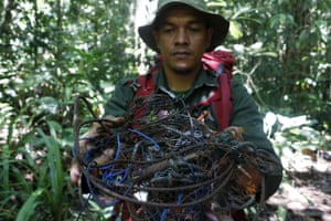 A forest ranger holds a wire trap he found during a rescue patrol for endangered animals at Leuser national park in Aceh, Indonesia