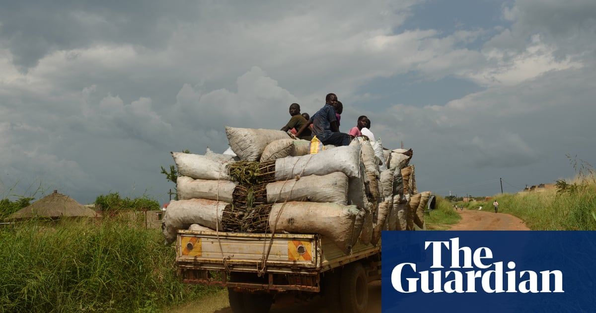 Forests fall, animals die, desert looms: Uganda's burning problem