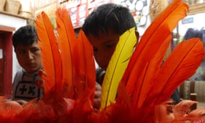 Two boys help prepare feather headdresses ahead of the sun festival in the Filigranas Peruanas workshop in Cusco.