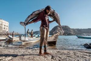 A fisherman at Serra fish market in Aden, November 2019.