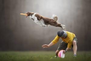 Flying Tim.