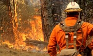 Hotshots work the fire line in Ferguson, California, on 5 August.