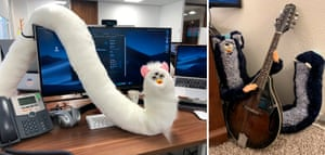 Paul Curry's uploads to the to the 'long Furbies' Reddit