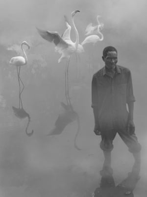 Patrick and Flamingos, Zimbabwe, 2020