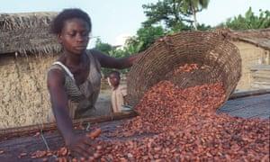 A Fairtrade farmer in Ghana sorting cocoa beans