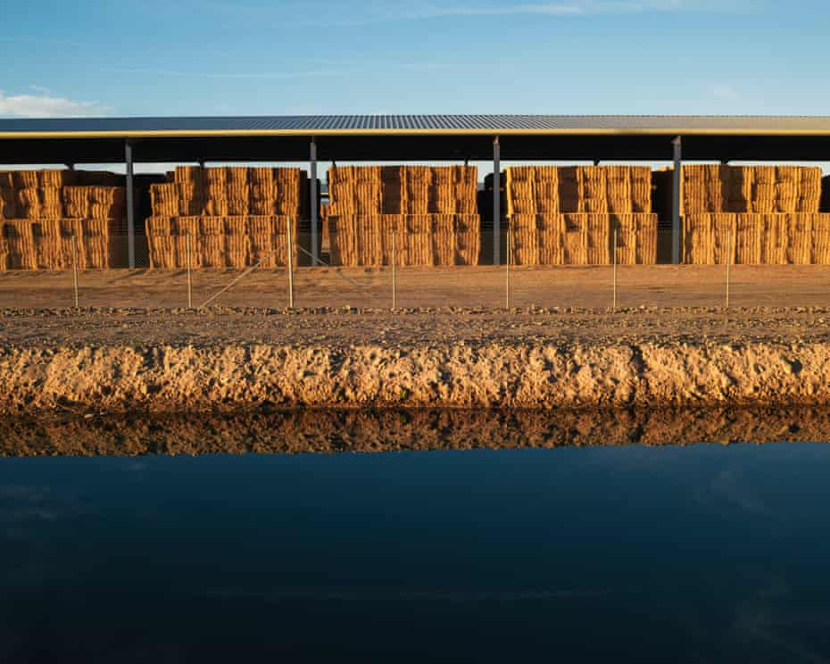 The storage barns at Fondomonte Farms and a PVID irrigation ditch, Blythe, California, USA, 2019