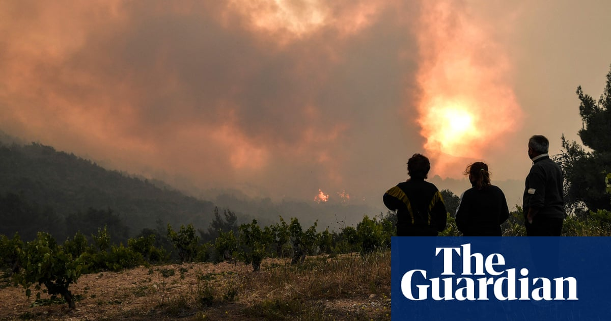Greek firefighters tackle major forest fire in conservation area near Athens