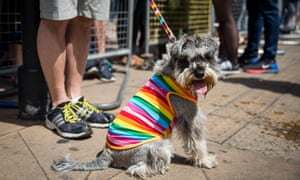 A dog is dressed in a rainbow coat as people gather to watch the annual event.