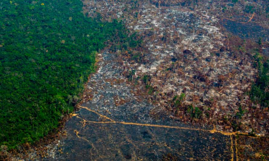 An aerial view of deforestation in the Amazon basin
