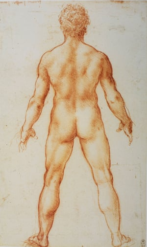 The rear of the Renaissance … a detail of Da Vinci's standing male nude.