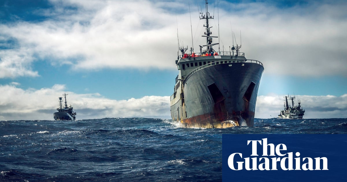 'It was sink or turn yourself in': behind a dangerous 10,000 mile ocean pursuit