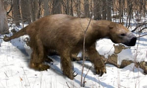 An illustration of the extinct giant ground sloth.