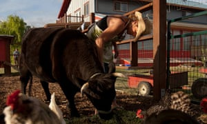 Terces Engelhart tends to the animals at Be Love Farm in this photograph from 17 April 2011. The farm supplies produce to the Engelharts' restaurants.