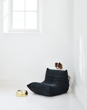 Mini Togo chair designed by Michel Ducaroy for Ligne Roset. Capri dog bowl by Lord Lou from Harrods