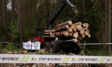 Environmental activists chain themselves to a logging machine to try and stop felling in Bialowieza forest