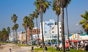 'The iconic association of palm trees with Los Angeles is a positive, but we're now in a period where we have a better understanding of what's needed,' says a climate expert.