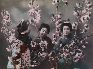 Three Japanese women dressed in traditional kimonos pose behind cherry blossoms in 1918.