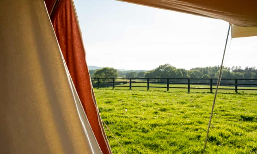 View from a tent on the site, which covers five acres and is fringed by a forest.