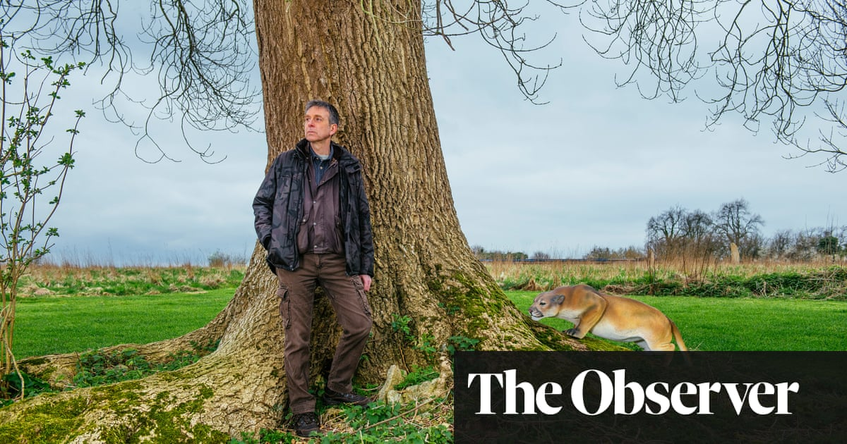 On the trail of Britain's wild big cats
