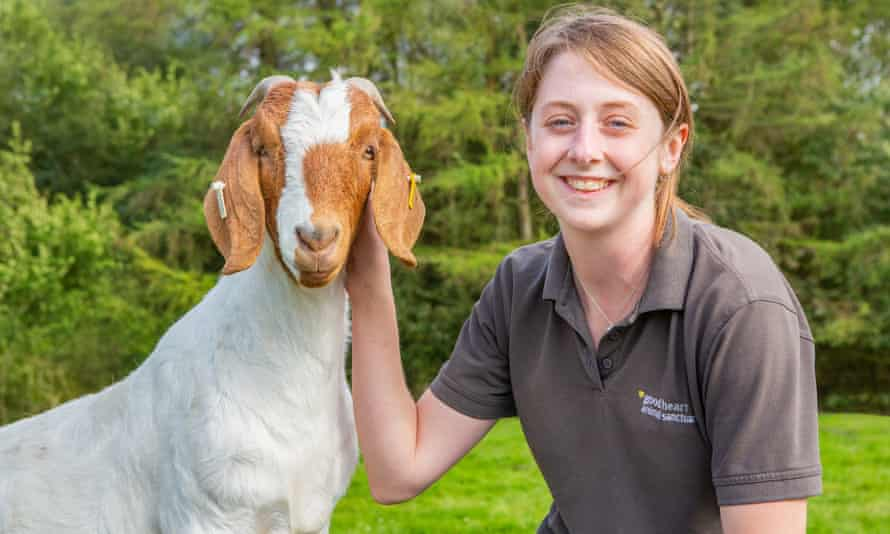 Kath Bourne at Good Heart Animal Sanctuaries
