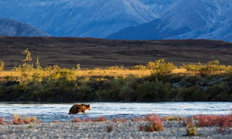 Alaska's Arctic national wildlife refuge now has a $1bn price tag on it