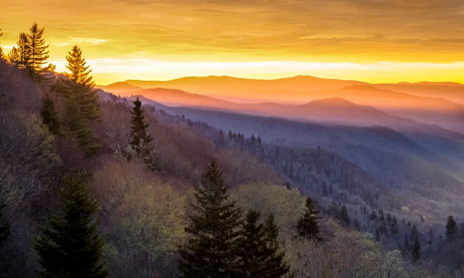 Sunrise in the Smoky Mountains … Powers's nature writing is as evocative as it's ever been.