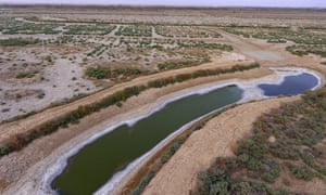 A almost dry canal full of salt in the area of Siba in Basra.