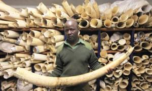 Image result for ivory trinkets