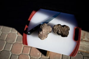 A truffle, sliced in half, at a Jackson Family Wines property.