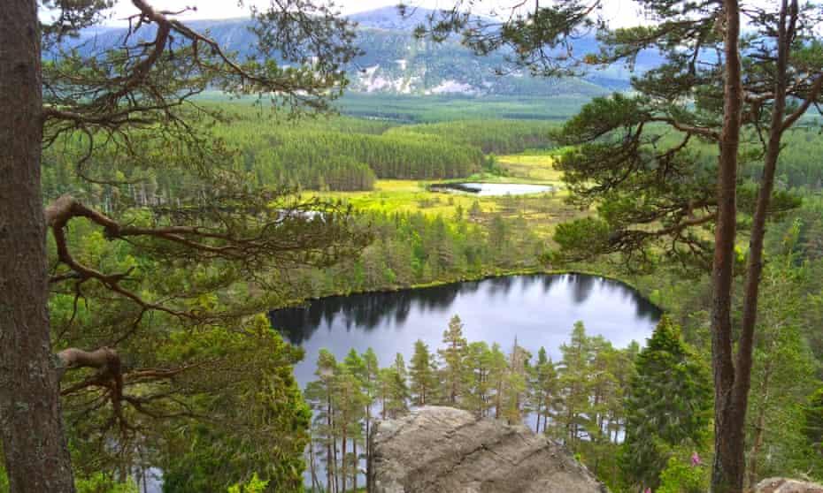 Reclaim Your Self Scotland Retreat Cottage