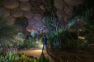 A man inside the Mediterranean biome at the Eden Project, which houses temperate and arid plants such as olives and grape vines