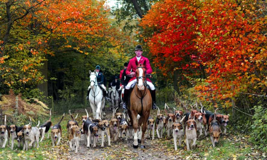 """Members of the Holderness Hunt in East Yorkshire, as a new poll found that any attempts to repeal the Hunting Act would be """"deeply unpopular"""" among the majority of the British public."""