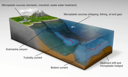 A diagram of how microplastics get into the sea and are then carried along by deep-sea currents.