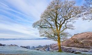 """""""Frosty misty morning on Baslow Edge Peak District National Park, Derbyshire, England, UK<br>D1PG4T Frosty misty morning on Baslow Edge Peak District National Park, Derbyshire, England, UK"""""""