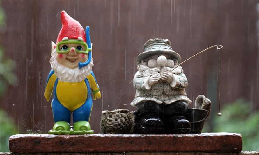 Heavy rain soaks garden gnomes.