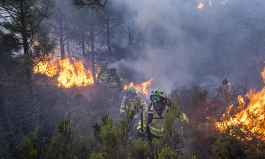 Firefighters tackle wildfire near the town of Jubrique in southern Spain
