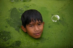 A boy swims in a pond covered with algae in Bhaktapur, Nepal.