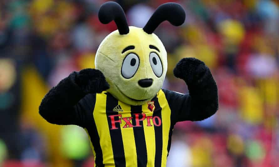Harry the Hornet goaded Wilfried Zaha after Palace's visit to Vicarage Road in 2016