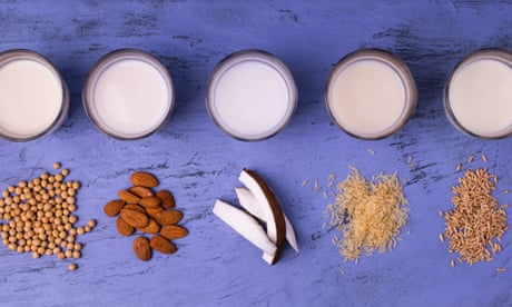 Almonds are out. Dairy is a disaster. So what milk should we drink?