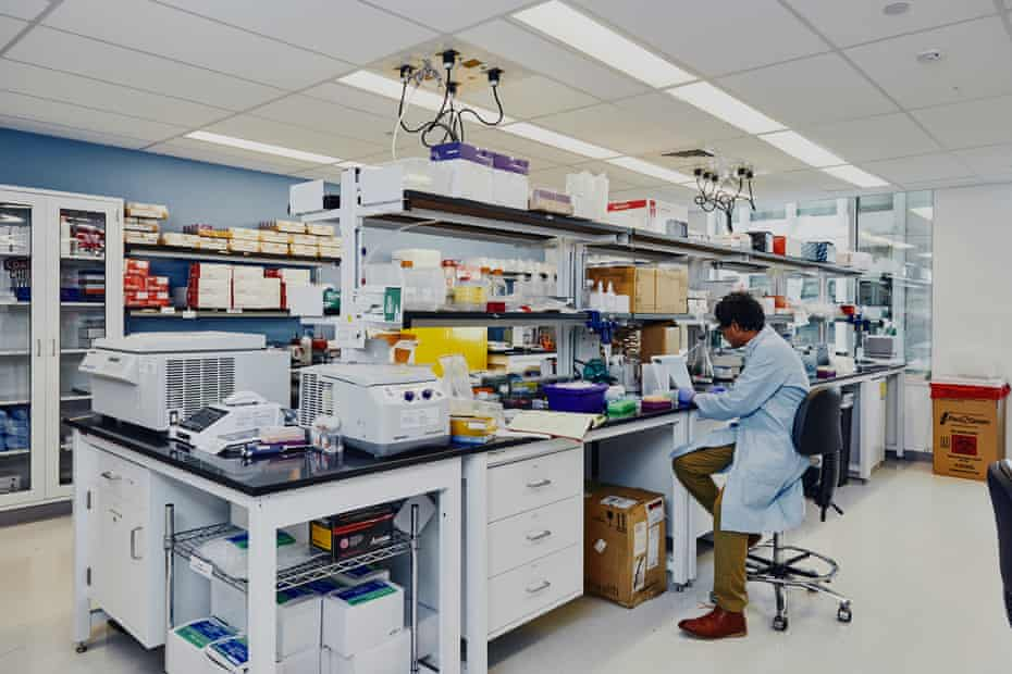 eGenesis, a biotech that genetically engineers pigs so that their organs can be used for human transplant using CRISPR in Cambridge, Massachusetts.
