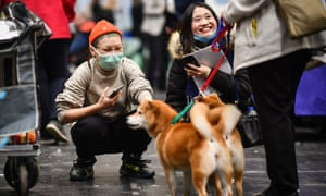 A visitor wears a face mask at Crufts.