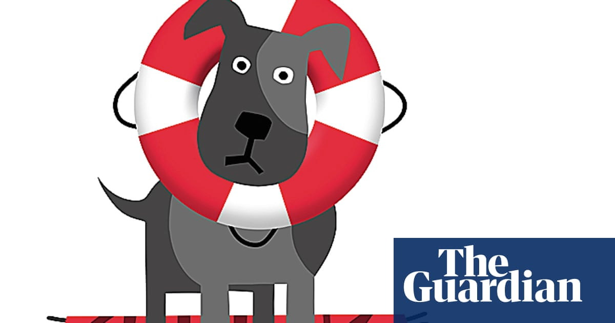 What I'm really thinking: the owner of a 'dangerous' dog | Life and