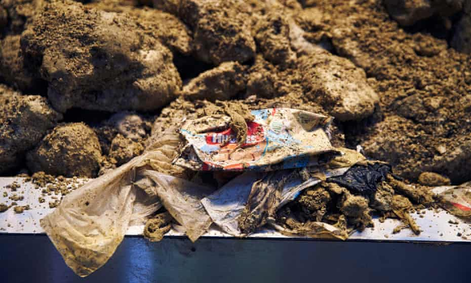 Contents of a London fatberg