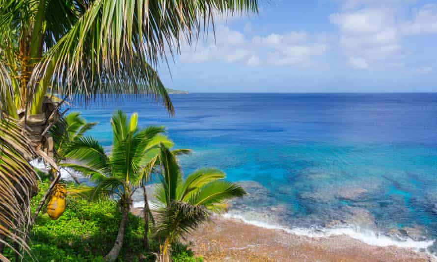 Tropical scene of turquoise water below palm trees and fronds swaying in breeze over ocean