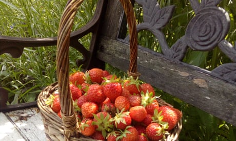 So much more than growing food': readers on the joy of an