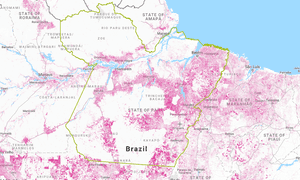 Tree cover loss in the Amazonian state of Pará from 2001 to 2015