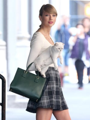 Taylor Swift out with her cat in New York.