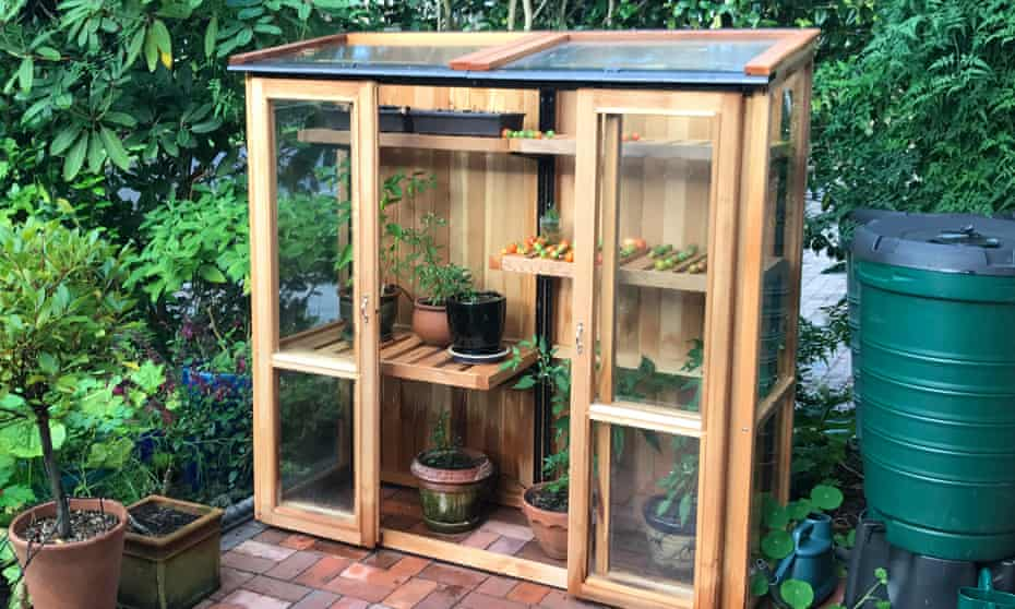 Tall cold frame