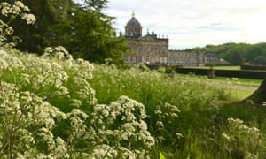 Castle Howard, in the distance behind a froth of cow parsley.